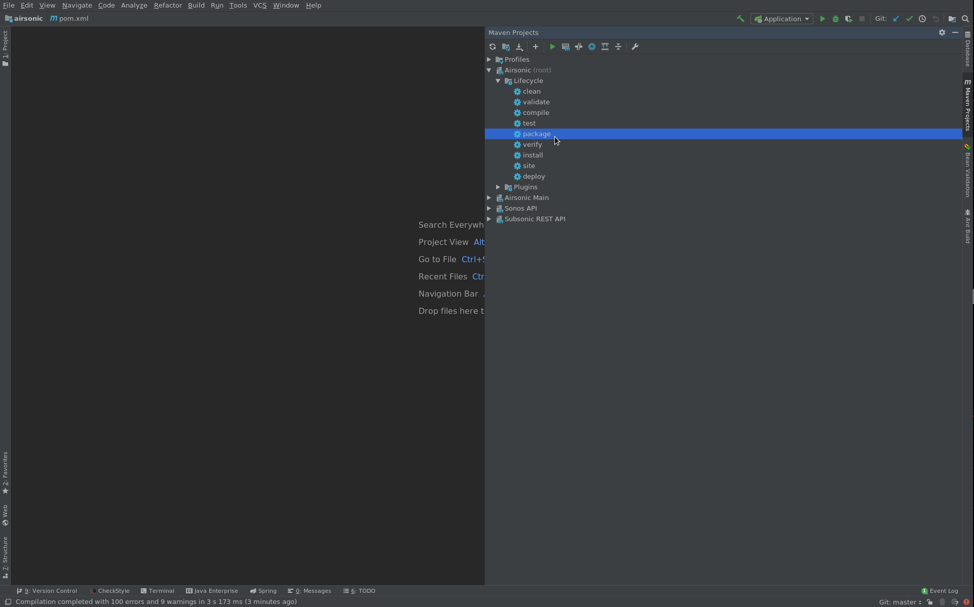 Developing with Intellij - Airsonic